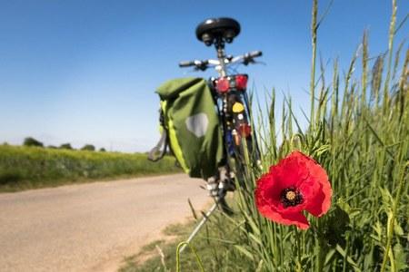 Luglio 2021 - Corso di formazione per operatori del turismo: il turismo slow e la tracciatura GPS di itinerari